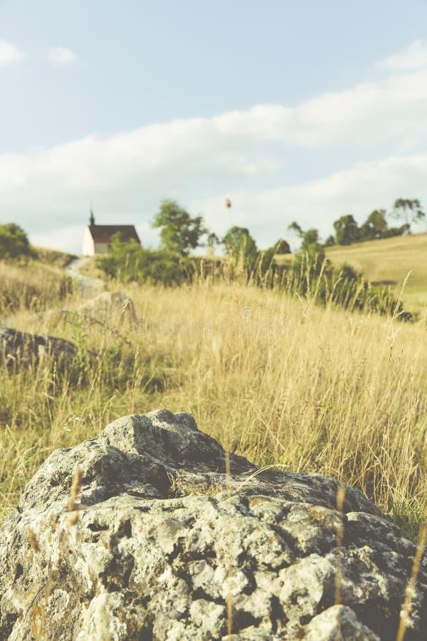 Grey Rock su Brown e campo erboso verde durante il giorno immagine stock libera da diritti
