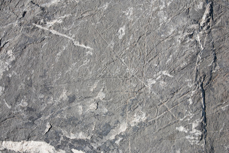 Download Grey rock texture stock image. Image of macro, relief - 20459471