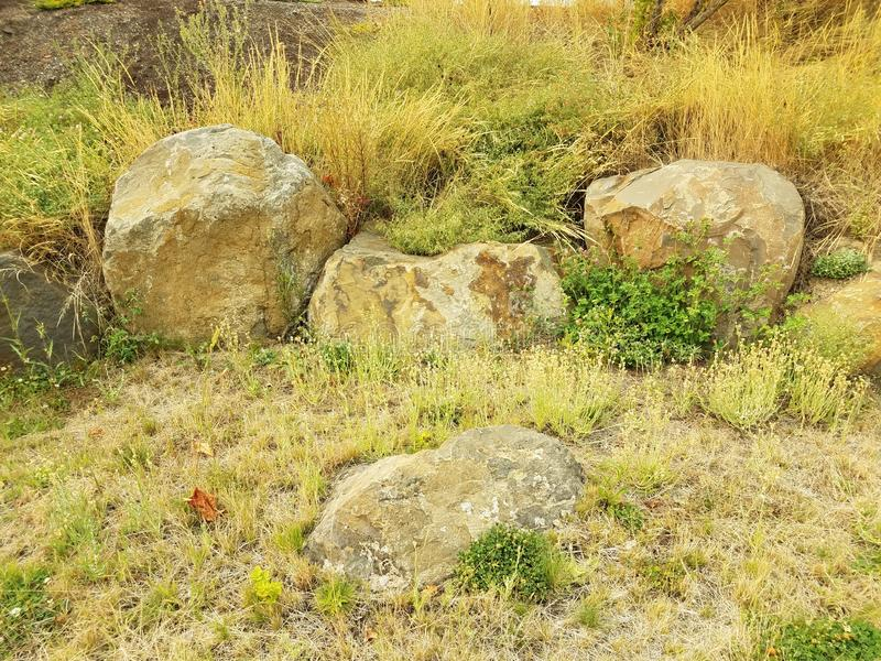 Grey rocks or boulders and green and yellow grasses. Large grey rocks or boulders and green and yellow grasses royalty free stock images