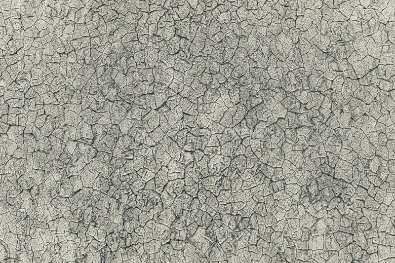 Grey rustic texture background with craquelure. Monochrome stock images