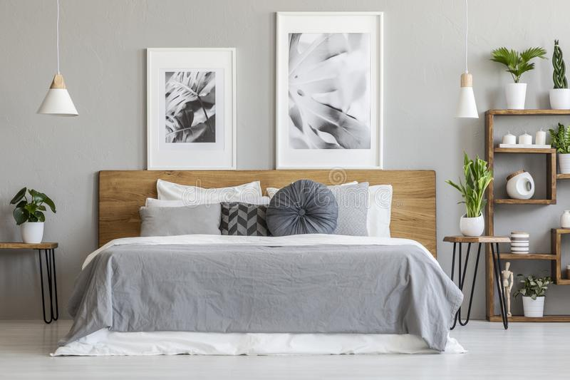 Grey sheets and cushions on wooden bed in bedroom interior with. Posters and plants. Real photo royalty free stock photos