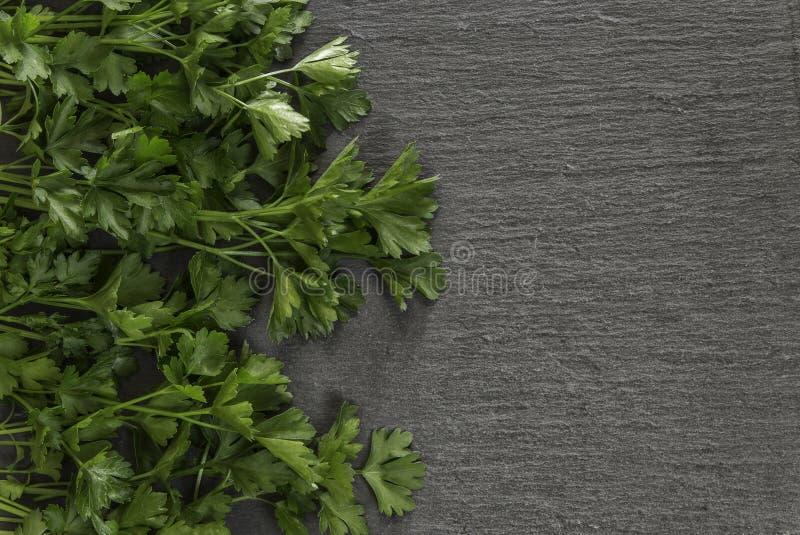 Grey stone background with fresh parsley. Fresh parsley on stone background royalty free stock photography