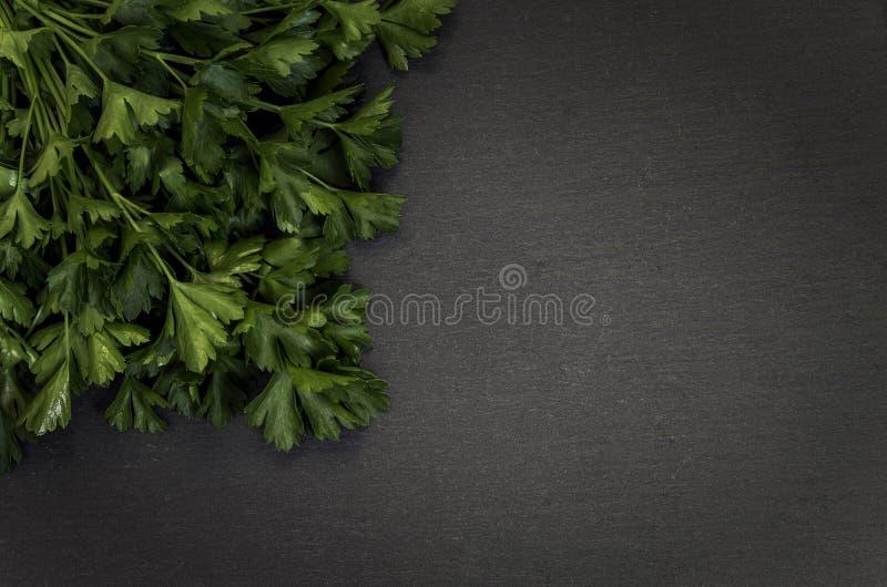 Grey stone background with parsley left corner. Parsley on left corner grey stone background royalty free stock photos