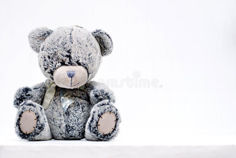 Grey Teddy Bear imagen de archivo