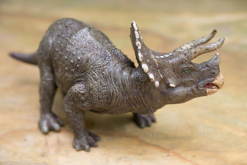 Grey triceratops toy standing. On rock stock image
