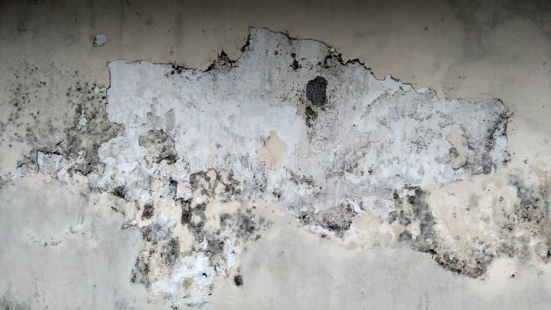Grey Wall med Grungetextur royaltyfri bild
