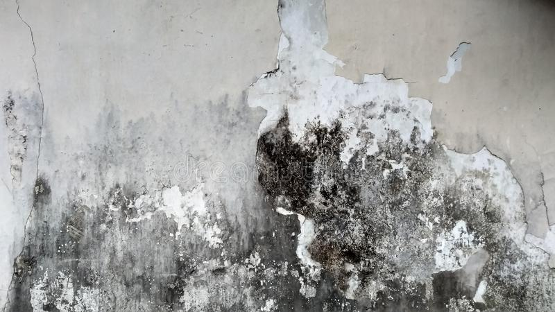 Grey Wall met Grunge-Textuur royalty-vrije stock afbeeldingen