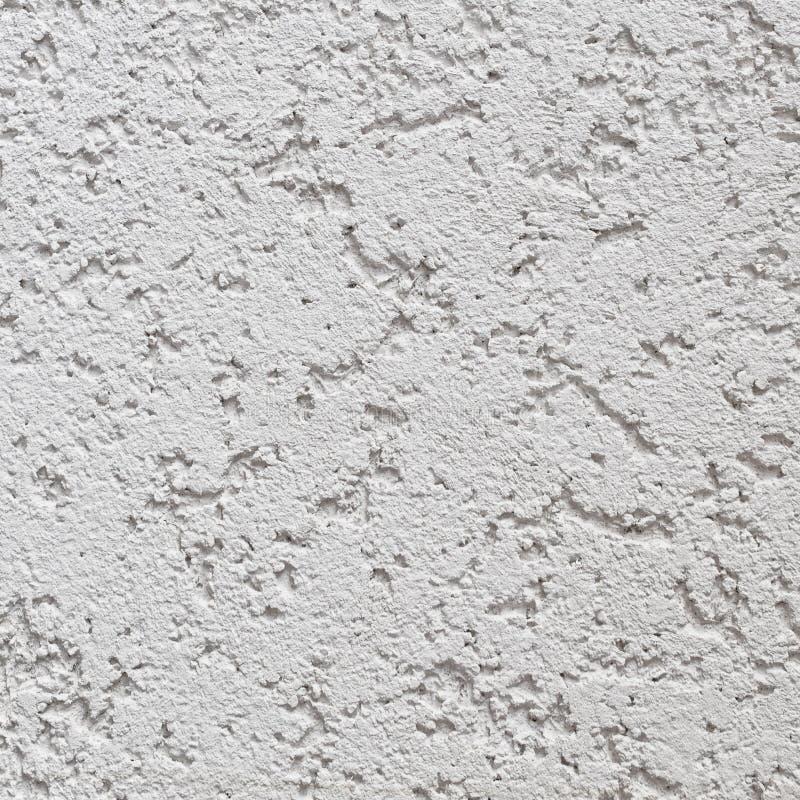 Grey Wall Stucco Texture leggero, Gray Coarse Rustic Textured Background naturale dettagliato, spazio concreto della copia fotografia stock libera da diritti