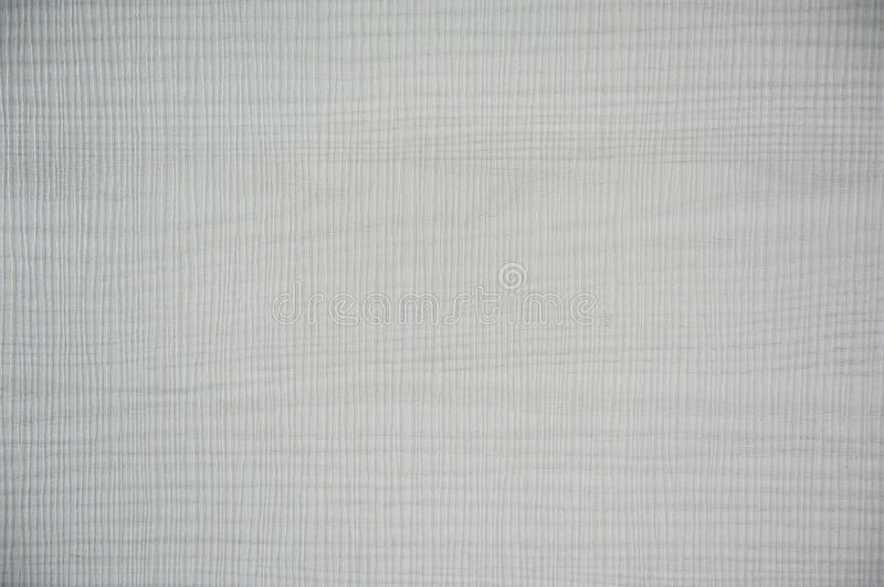 Grey wallpaper. Texture and background royalty free stock image
