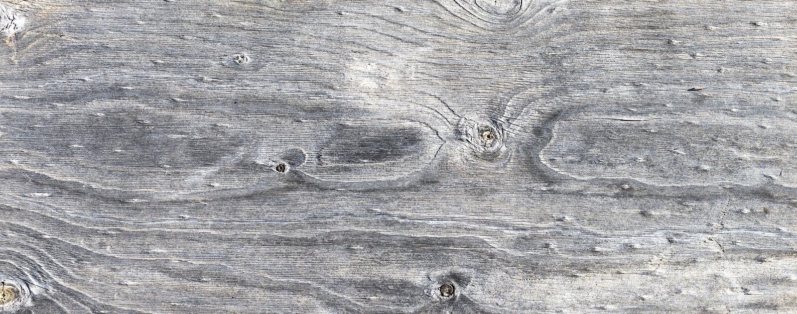Grey weathered Wood Background. A background of grey weathered wood with a textured surface of knots and wood grain stock photography