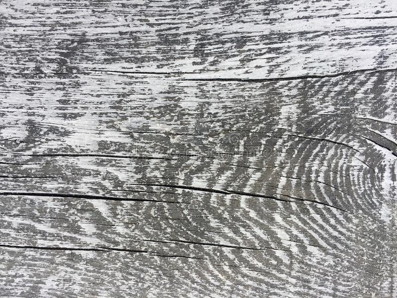 Grey and white old aged plank for interesting backgrounds. For web, print, blog, and creative ideas. stock photos