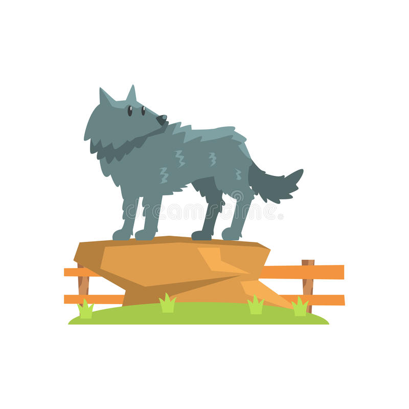 Grey Wolf Standing On Large Rock en remiendo de la hierba verde en recinto del parque zoológico del aire abierto libre illustration