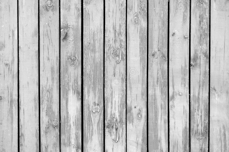 Grey Wood Background. A grey wooden wall as a background