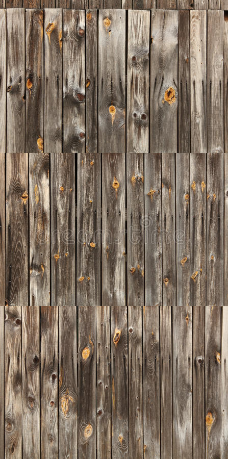 Grey wood orange knotholes collection stock photography