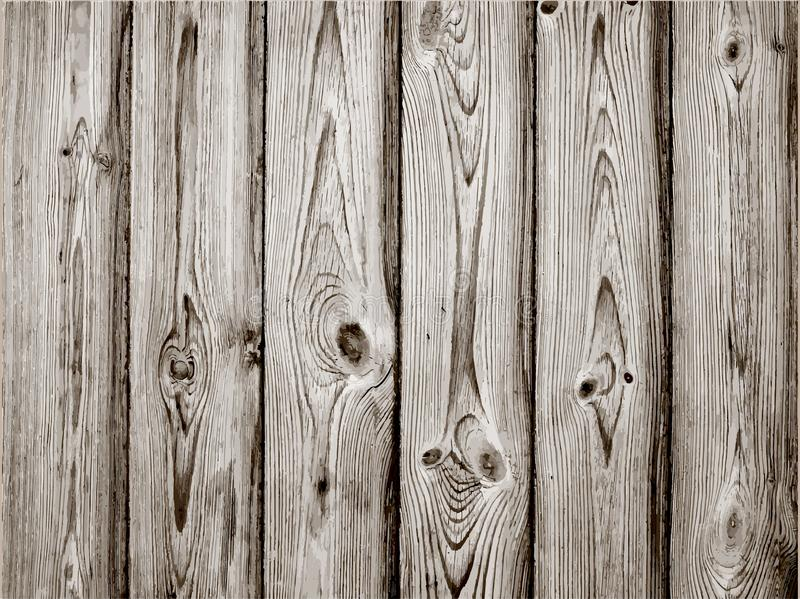 Grey wood plank texture for background. Vector royalty free illustration