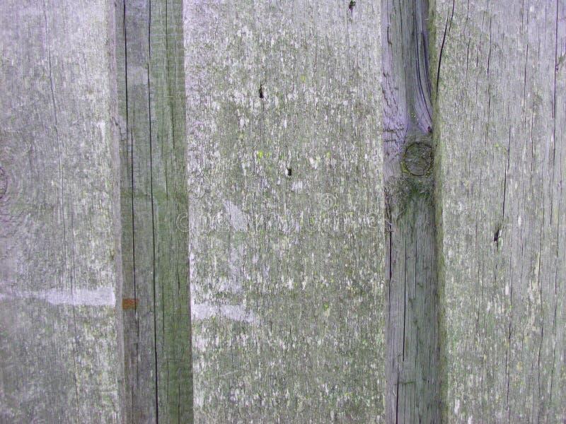 Grey Wood Planks Background, textura de madera, pared del piso, efecto 3D foto de archivo