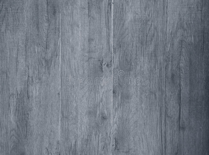Grey wood texture. For background stock images