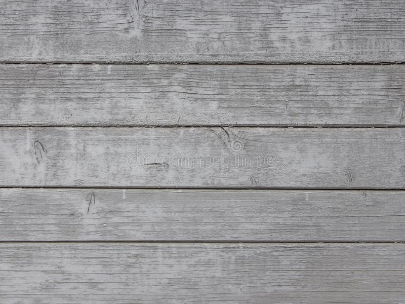 Grey wood texture background with natural patterns. royalty free stock images
