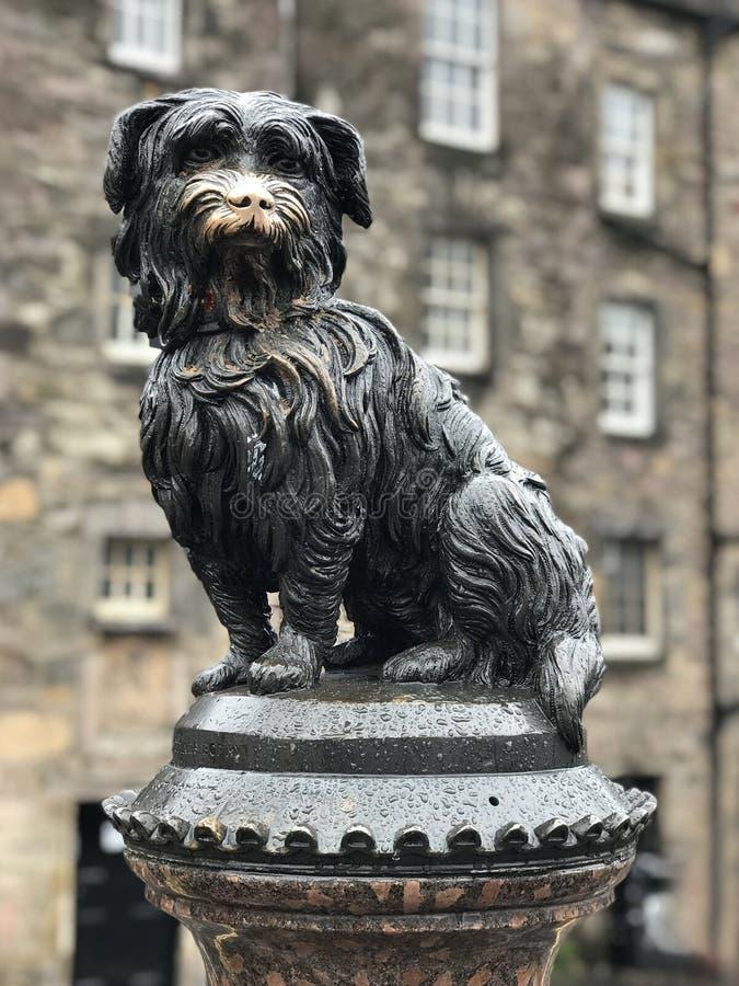 Greyfriars Bobby Dog Statue à Edimbourg, Ecosse photo libre de droits
