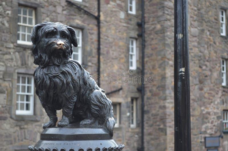 Greyfriars Bobby, Edimburgo immagini stock libere da diritti