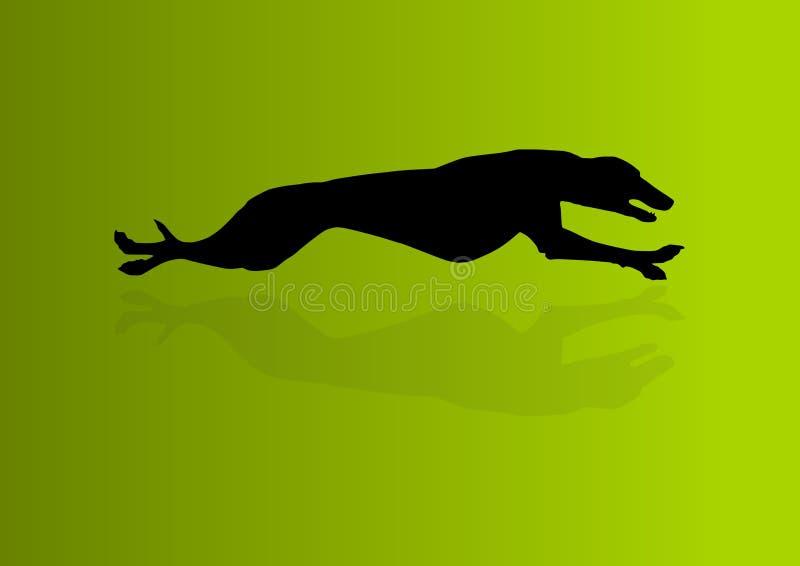 Greyhound Vector royalty free illustration