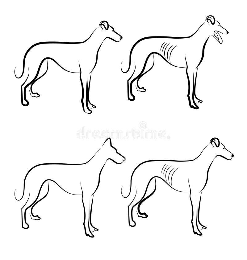 Greyhound Dogs Logo Royalty Free Stock Images