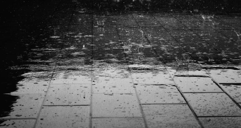 Greyscale Photo Of Rain Drops Free Public Domain Cc0 Image
