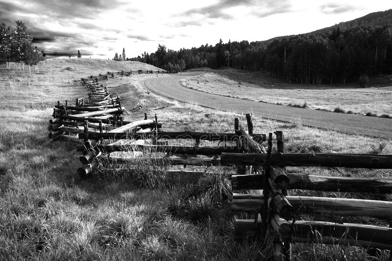 Greyscale Photo of Wooden Fence Near Road royalty free stock photo