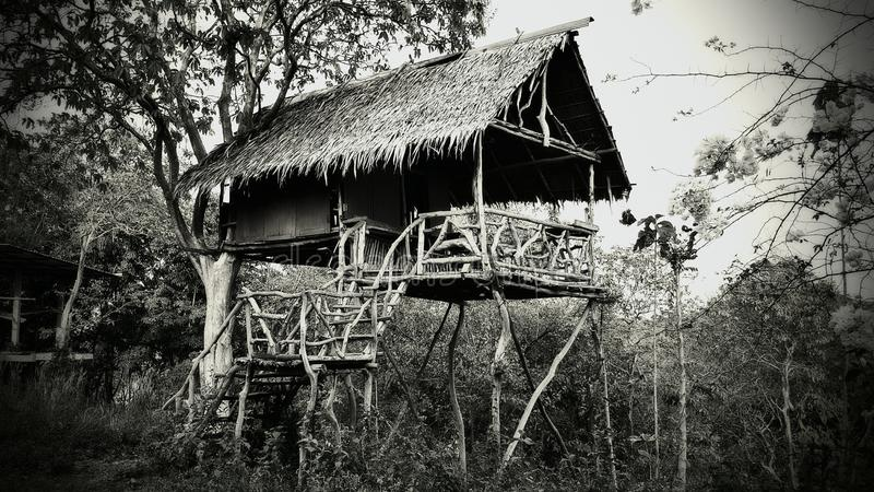 Ghosts Bungalow in Jungle of Thailand stock photo