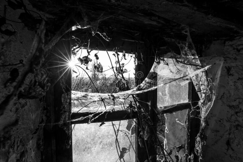 Greyscale shot of the inside on an old abandoned building with spider web near the window. A greyscale shot of the inside on an old abandoned building with royalty free stock images