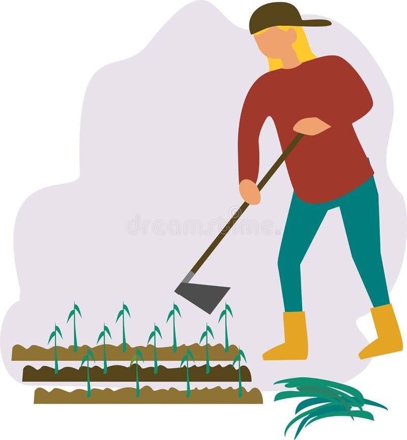 Gricultural arbetare som planterar skördar Bondeväxtskördar stock illustrationer