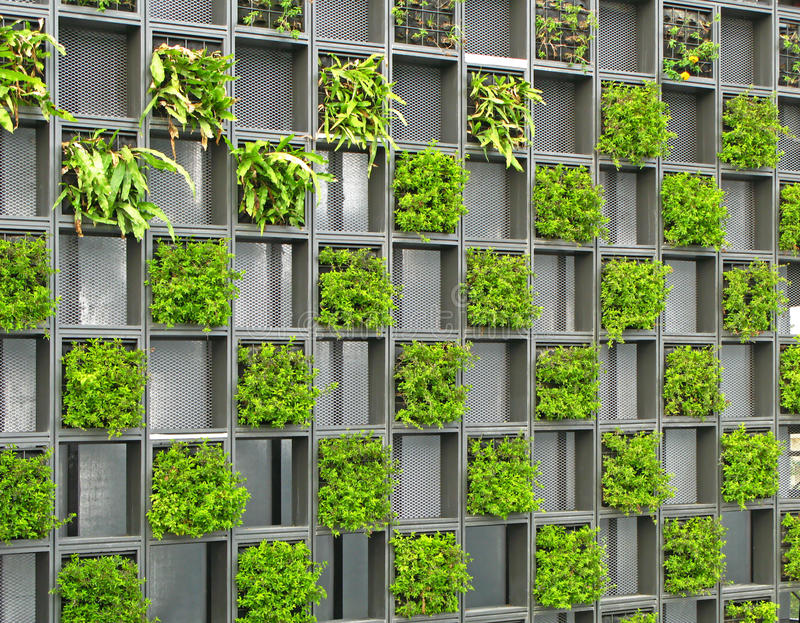 Grid Wall Of Plants Stock Photo Image Of Leaves Wall