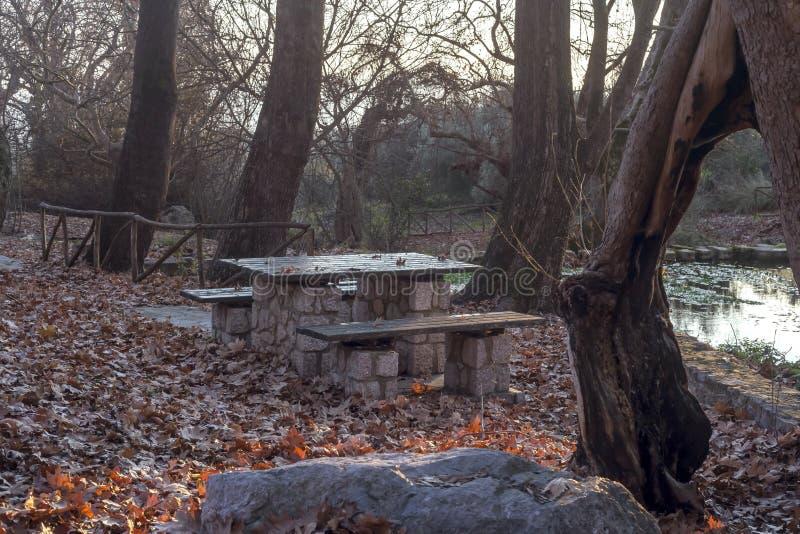 Griechenland Quelle und Bänke in einem Regenwald stockfotos
