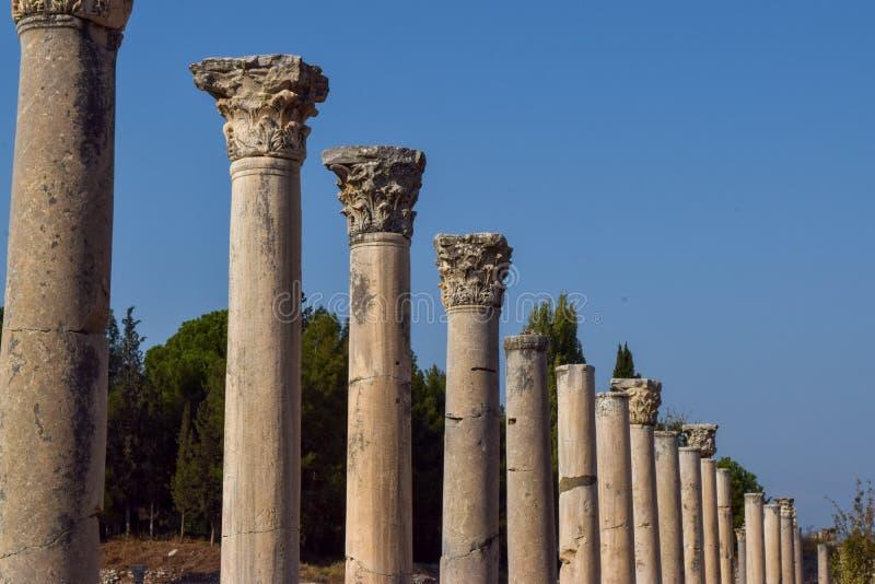 Griechische chorinthian Spalten in Folge stockfotografie