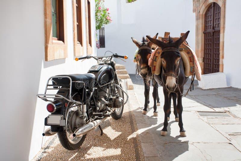 Griechische Esel - berühmtes touristisches Symbol der Stadt von Lindos, R lizenzfreie stockbilder