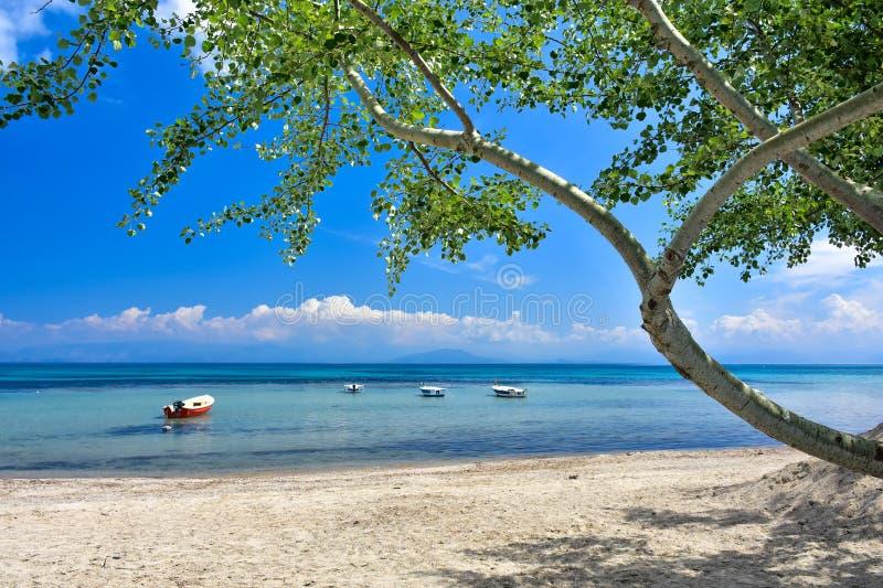 Grieks strand op het Eiland Korfu in het Middellandse-Zeegebied royalty-vrije stock afbeelding