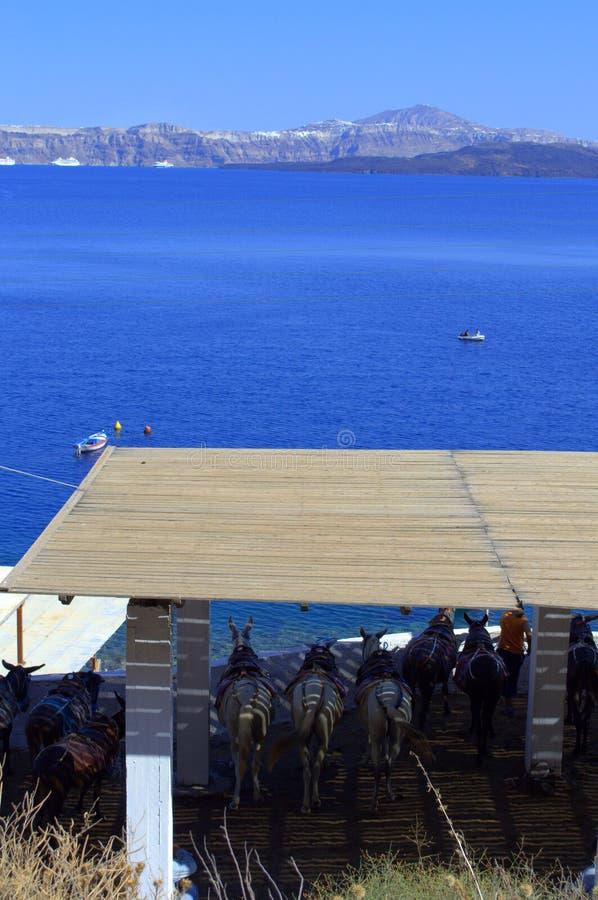 Griekse eilandmening royalty-vrije stock foto