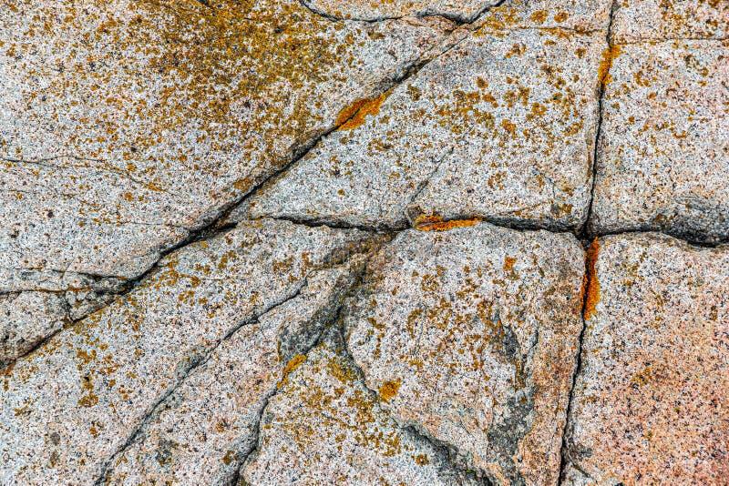 Grietas naturales en roca del granito en el parque nacional del Acadia, los E.E.U.U. fotos de archivo libres de regalías