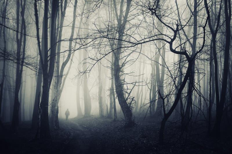 Griezelig bos met de mens die op een donkere weg lopen stock afbeeldingen