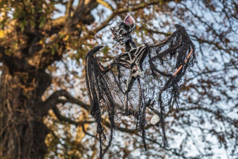 Griezelig decoratief skelet van knuppel op boom royalty-vrije stock afbeeldingen