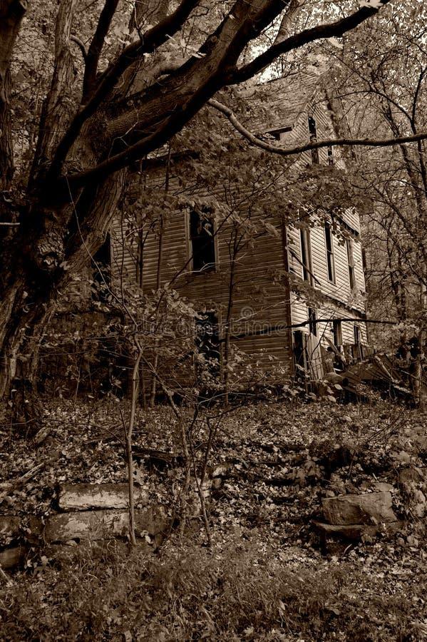 Download Griezelig Huis 2 stock foto. Afbeelding bestaande uit sepia - 293900
