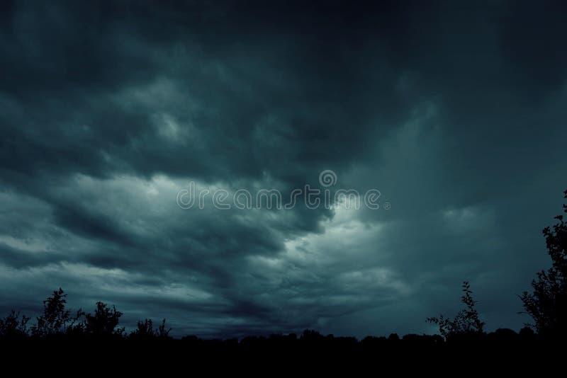 Griezelig nevelig mistig bos met dramatische hemel royalty-vrije stock foto