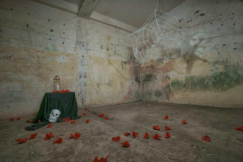 Griezelig griezelig spinneweb Helloween stock fotografie
