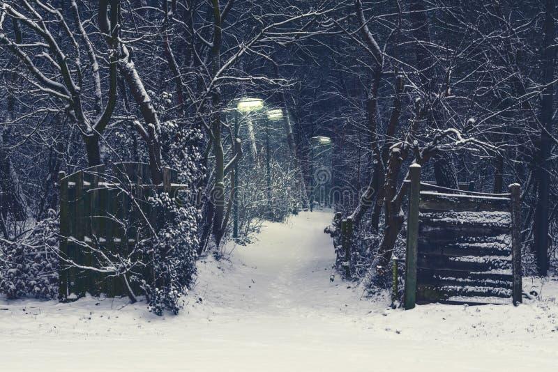 Griezelige bosweg met aangestoken lantaarnpalen op een donkere en sneeuw de winternacht royalty-vrije stock foto's