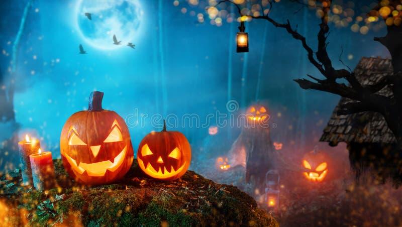 Griezelige Halloween-pompoenen in donker geheimzinnigheid bos royalty-vrije stock foto's