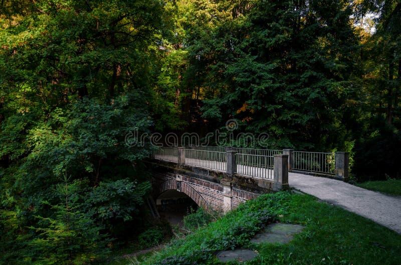 Griezelige halve brug stock afbeeldingen