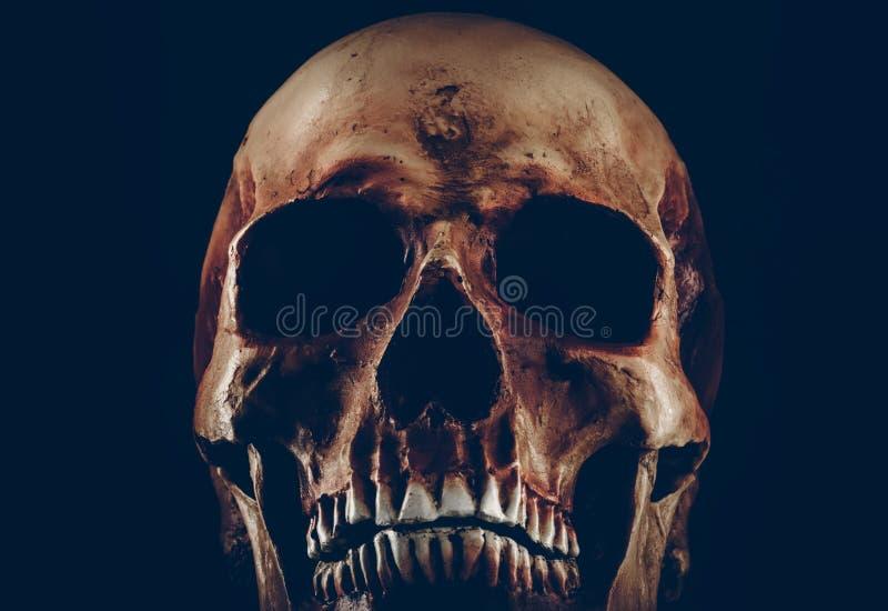Griezelige oude schedel op zwarte achtergrond royalty-vrije stock afbeeldingen