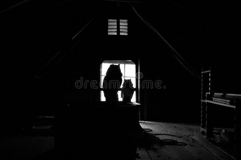 Griezelige uilsilhouetten in donkere zolder stock afbeelding