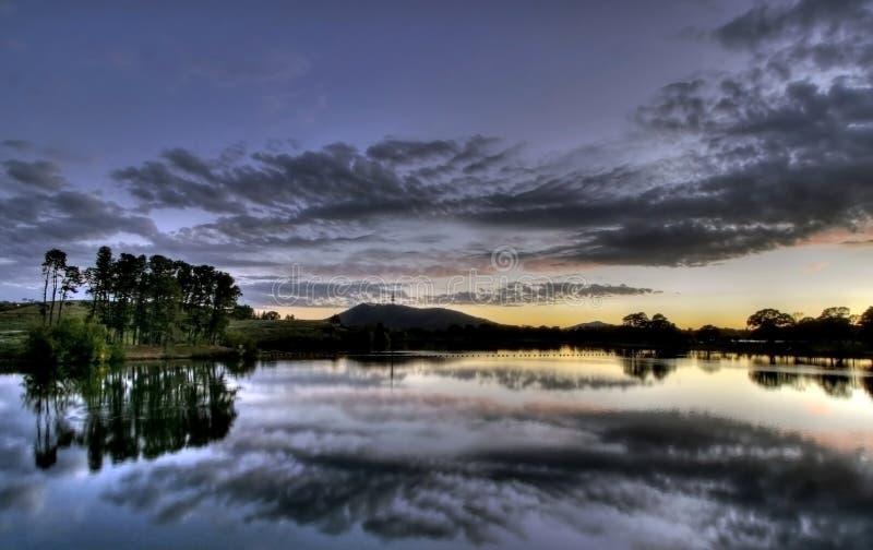 Griffon de Burley de lac photo stock