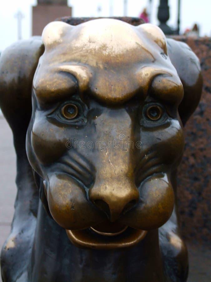 Griffon en bronze devant l'académie des arts sur le remblai d'université de la rivière St Petersburg Russie de Neva image libre de droits
